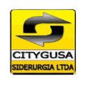 CITYGUSA - Metalsoft